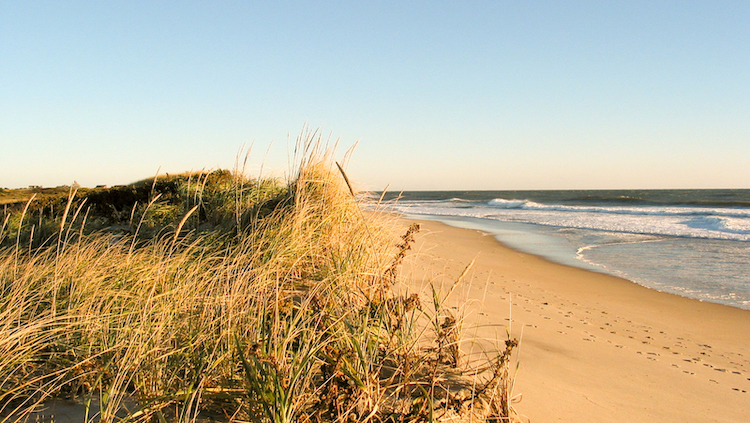 nantucket beach with blue sky and no one around